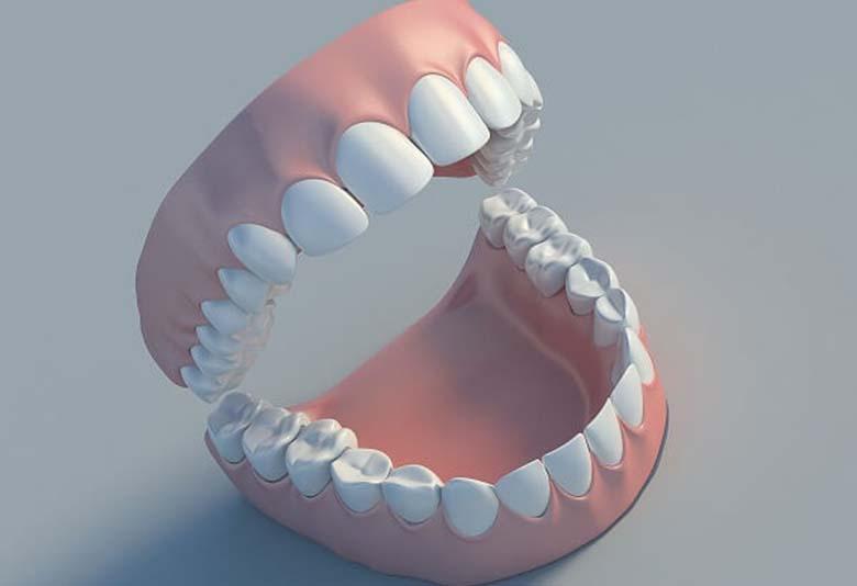 Số răng của người bình thường