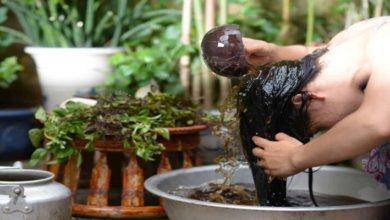 Photo of Hướng dẫn cách dùng bồ kết dưỡng tóc thêm mềm mượt, đẹp tự nhiên