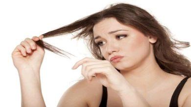 Photo of Bật mí cách chữa rụng tóc và kích thích mọc tóc đơn giản mà hiệu quả