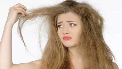 Photo of Mách bạn cách giúp tóc mọc dày trở lại đơn giản, nhanh chóng