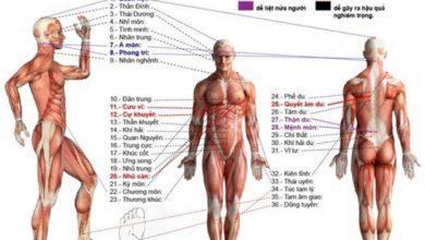 Photo of Huyệt đạo là gì? Tìm hiểu huyệt đạo từ A đến Z