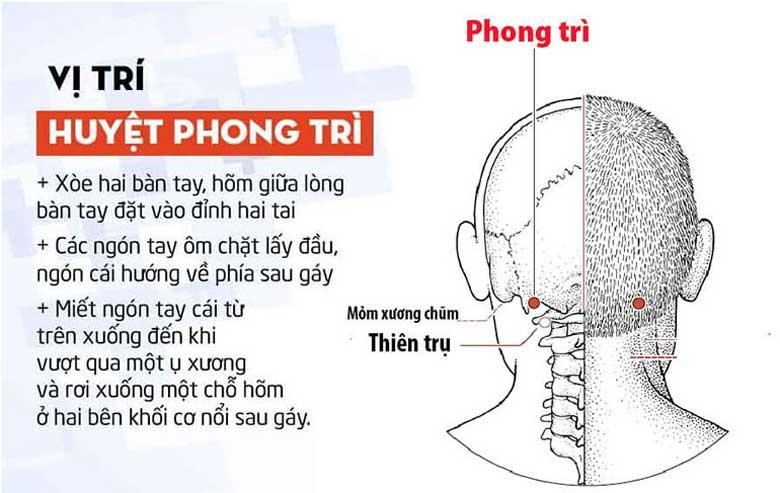 Phương pháp xác định vị trí của huyệt Phong Trì