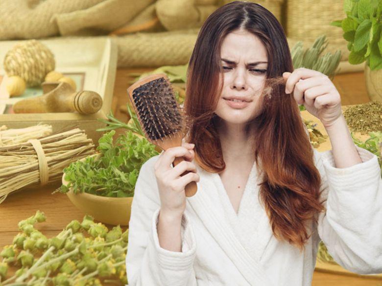 Dấu hiệu tóc hư tổn