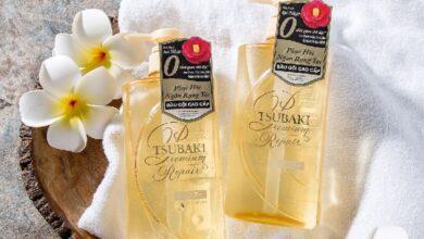 Photo of 5 loại dầu gội phục hồi tóc từ nhẹ đến nặng, hoàn toàn không chứa silicon